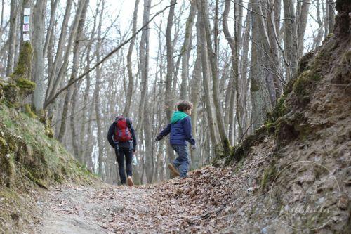 wandern-hahnenbachtal