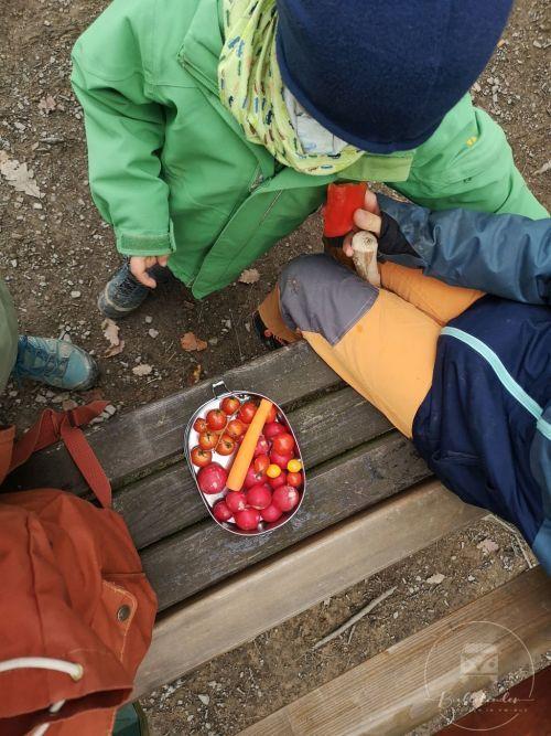 bullikinder-picknick-bank1